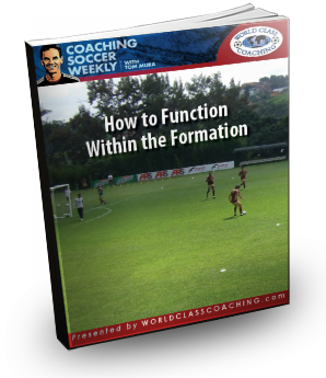 051HowtoFunctionWithintheFormationCover